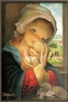 Imán Virgen ventana